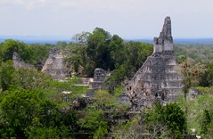 The Mayan City of Tikal (zoniedude1) Tags: travel archaeology temple rainforest guatemala culture adventure mayanruins jungle tikal tropical centralamerica peten centralplaza templeofthejaguar templei centralacropolis zoniedude1 mayabiospherereserve elmundomaya viewfromthetopoftemplev