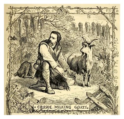 14- Crusoe ordeña las cabras