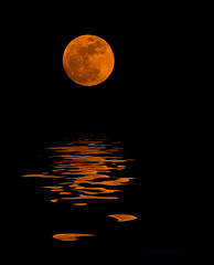 flooded red moon on black (MistyDays / CB) Tags: california copyright moon vertical photoshop flood fake olympus sonomacounty redmoon photoshopfun verticalimage charleneburge e520 flamingpearcom charlenemburge copyrightcharlenemburge
