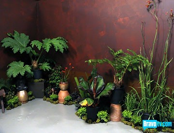 Theresa Zen Garden