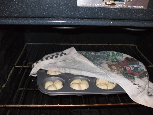 yeast rolls 007