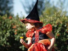 pa264546 (Antonio Fiol) Tags: halloween disfraz irene bruja escoba