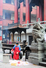 The Arhat's Temple (罗汉寺庙)