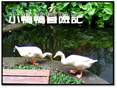 千樺餐廳42