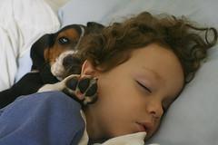 Friends (Arathane) Tags: dog amigos children hound cachorro basset heitor soneca arathane