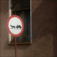 Proceed With Caution (Joy A Photos) Tags: road street wood horse window sign wall europe eu romania caution cart transylvania transilvania
