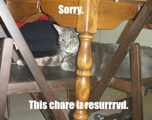 Sorry. This chare iz resurrrvd.