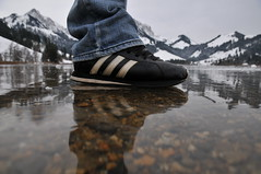 Adidas on Ice... (Just One Fix) Tags: schnee winter ice see nikon berge adidas eis spiegelung schwarzsee d300 lacnoir 1685 cantonfribourg kantonfreiburg sensebezirk 1685mm