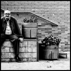 Spanish Economy Info Graphic (Sator Arepo) Tags: portrait blackandwhite bw reflex sitting rail calafell olympus handrail bambi economy e1 zuiko unemployed crisis unemployment deceleration uro 50mmmacroed