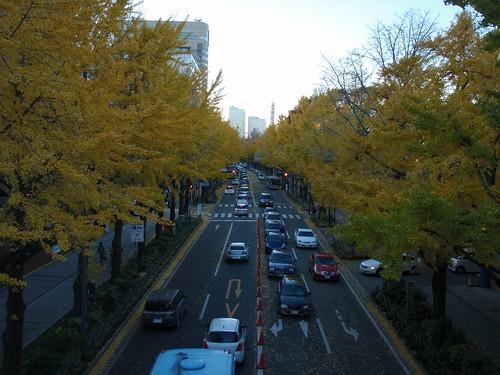Otoño en Yokohama