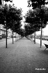 Rheinuferpromenade (ulli_p) Tags: city urban blackandwhite bw art d50 nikond50 picturesque blackdiamond vanishingpoints abigfave blackwhiteaward bwartaward unlimitedphotos spiritofphotography artofimages