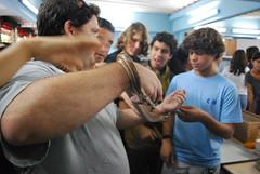 snake2_jacareh 038