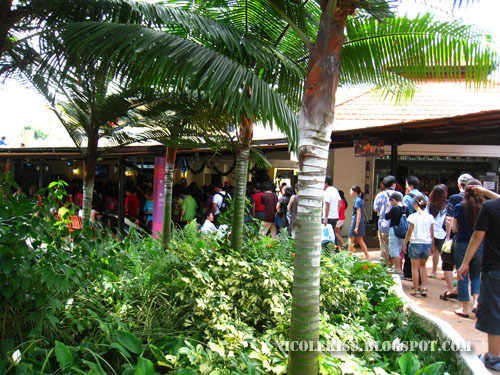 queue at sentosa