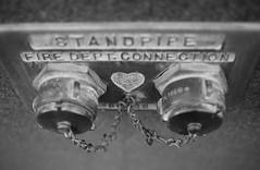 Heart (Dylan M Howell) Tags: bw canon dof heart bokeh indiana 50mm14 chain 5d elkhart firedept alienskin