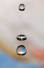triplicity (Ari Hahn) Tags: fab wet water droplets drops droplet tilt supershot goldstaraward waterbwet