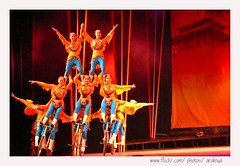 Standing Cycling (Araleya) Tags: show china travel woman beautiful bicycle female team women colorful asia nightshot performance beijing panasonic acrobatics acrobats teamwork skillful fz50 araleya leicadigital