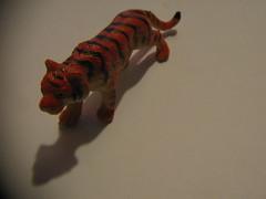 easy tiger (.reno) Tags: toy tiger plastic easy plastico tigre juguete sangraperonomuere largavidaamicmarapifiada
