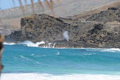 hawaii_1 131 (DiverDon) Tags: hawaii blowhole