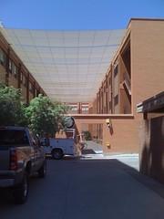 shady (alist) Tags: campus move alist asu robison alicerobison ajrobison