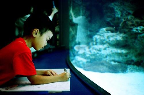 非常認真描繪魚兒的小盆友