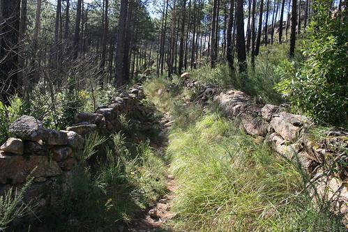 Subida al Monte Pindo