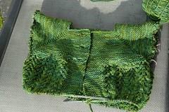 ladysweater1