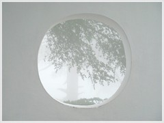 Moon Window. (Lucky-S) Tags: moon white mist tree window leaves fog wall clouds circle hole space branches clean clear cover kashmir simple plain jk circular jammu pca sheer the pcawhite