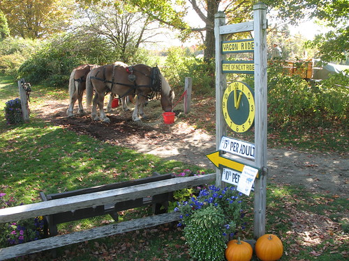 Wagon Ride sign