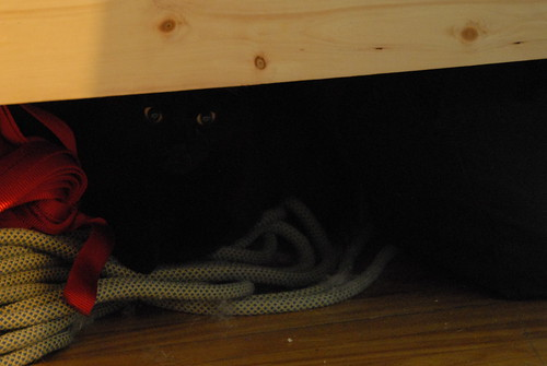 I AM UNDER UR BED GUARDING UR ROPES