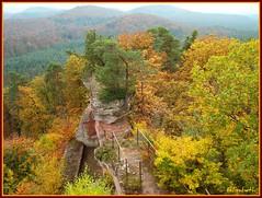 Vosges du Nord (Puce55-Elisabeth, peu prsente) Tags: nature automne landscape fort vosgesdunord naturescreations ruinelutzelhardt