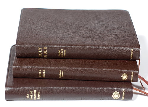 ESV Pitt Minion (Study in Brown)