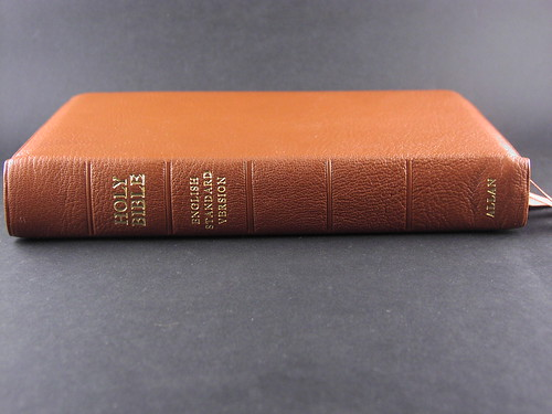 Allan's ESV in Tan Highland Goatskin
