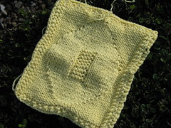 Go Skins! Dishcloth, for a Football Fan