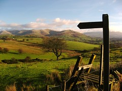 Path to the Howgills (barronr) Tags: england signs cumbria roadsigns footpath rightofway sedbergh howgillfells fingerposts