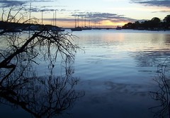 Branching out (pominoz) Tags: trees lake reflection sunrise boats nsw lakemacquarie arcadiavale