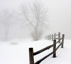 Foggy Day At Yates Cider Mill