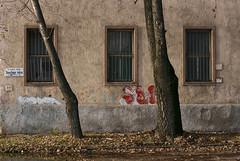 Noszlopy utca (sonofsteppe) Tags: street windows winter urban detail building tree art leaves horizontal wall facade corner 50mm graffiti daylight stem hungary industrial exterior outdoor budapest nobody scene explore fallen area series spraypaint grilled visual exploration thewall scribble fragment ilmuro streetplate scribbled wallscape sonofsteppe pusztafia kőbánya utcatábla streetplatesofbudapest óhegy noszlopyutca urbanlifeoftrees