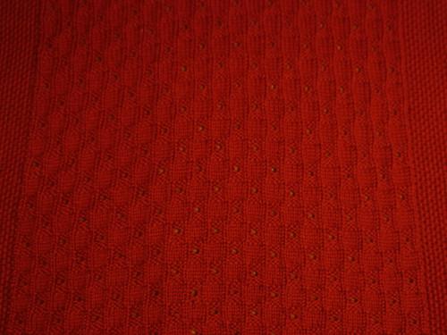 Cheri's red blanket 2
