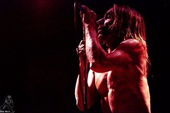 19 AzkenaRF03 Iggy Pop & The Stooges