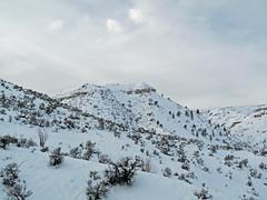 Highpoint on ridge up Dry Gulch