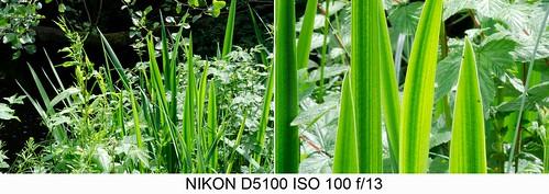 Nikon D5100 18-55mm zoom