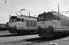 torino orbassano #26 (train_spotting) Tags: tigre trenitalia depositolocomotive torinoorbassano e652101 e633229