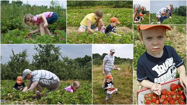 6-12-2011 strawberry festival