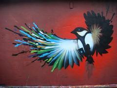 In Flight (elmada) Tags: bird art germany deutschland fly wings grafitti kunst wing elmada