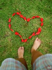 (Jana Carvalho) Tags: love me nature coração