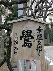 Eurasian bullfinch (ウソ) sign #5137