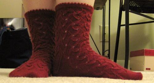 SL socks1 032608