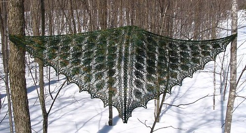 Luscious Forests Shawl