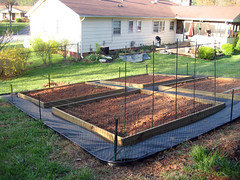 finished garden beds