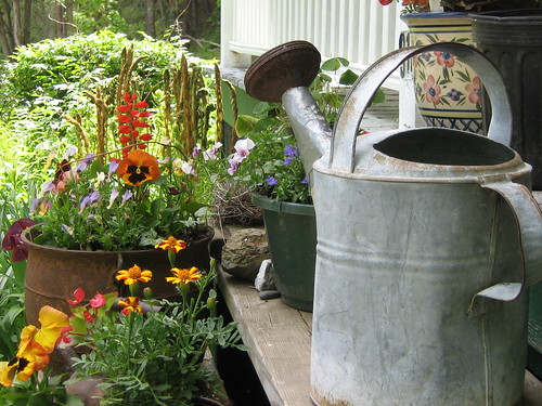 Grandpa's watering can